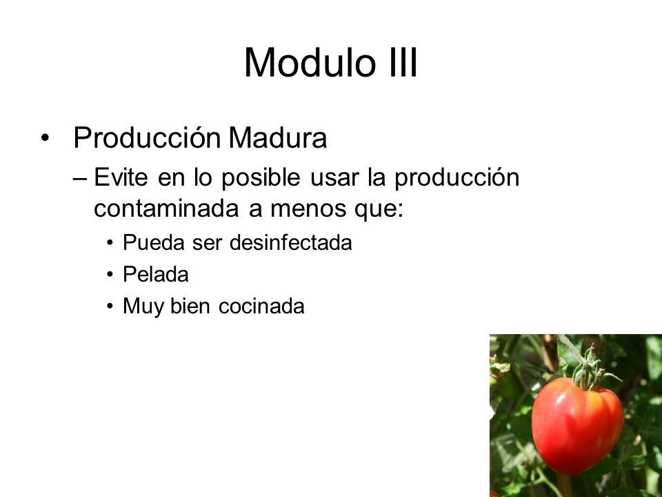Modulo III Producción Madura –Evite en lo posible usar la producción contaminada a menos que: Pueda ser desinfectada Pelada Muy bien cocinada