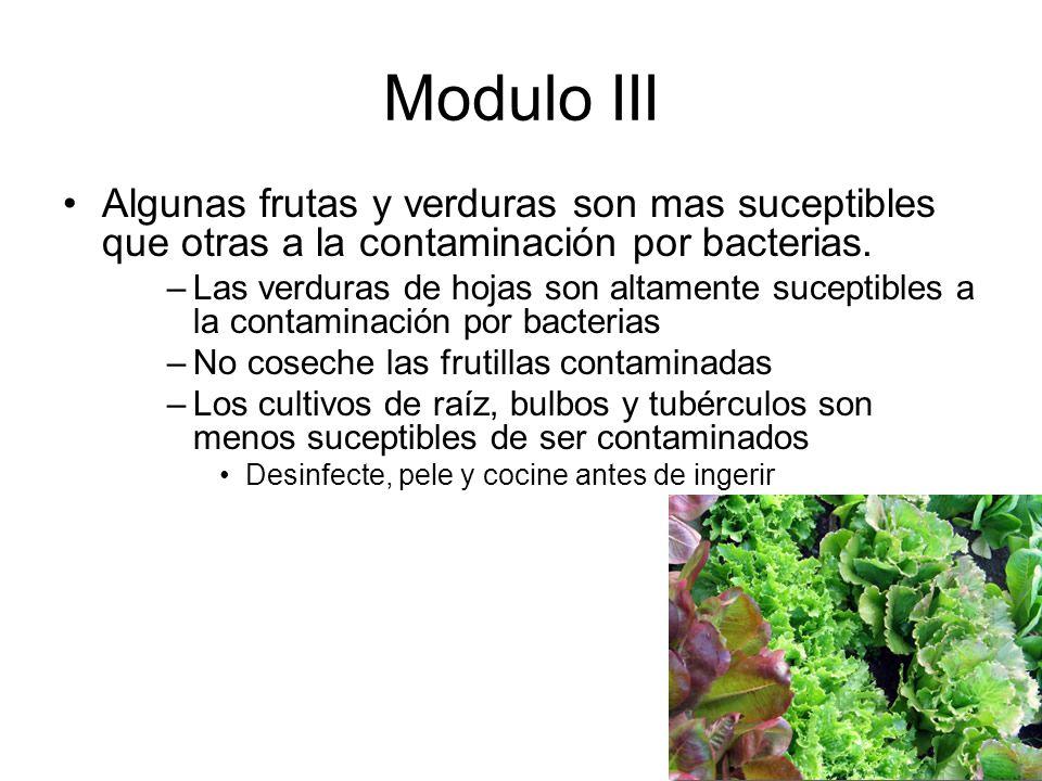 Modulo III Algunas frutas y verduras son mas suceptibles que otras a la contaminación por bacterias.