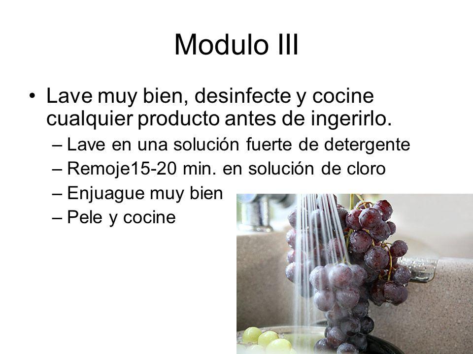 Modulo III Lave muy bien, desinfecte y cocine cualquier producto antes de ingerirlo.