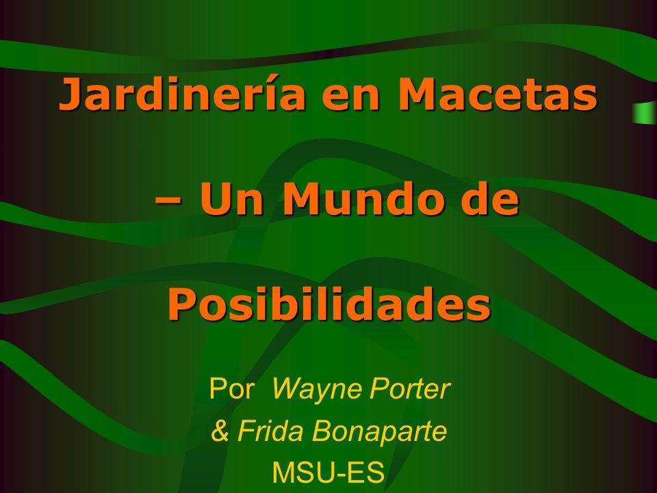 Jardinería en Macetas – Un Mundo de Posibilidades Por Wayne Porter & Frida Bonaparte MSU-ES