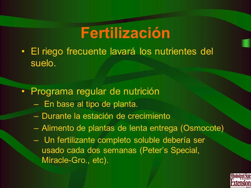 Fertilización El riego frecuente lavará los nutrientes del suelo. Programa regular de nutrición – En base al tipo de planta. –Durante la estación de c