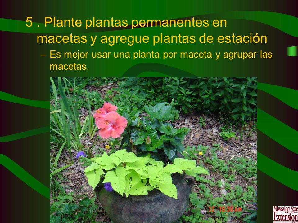 5. Plante plantas permanentes en macetas y agregue plantas de estación –Es mejor usar una planta por maceta y agrupar las macetas.
