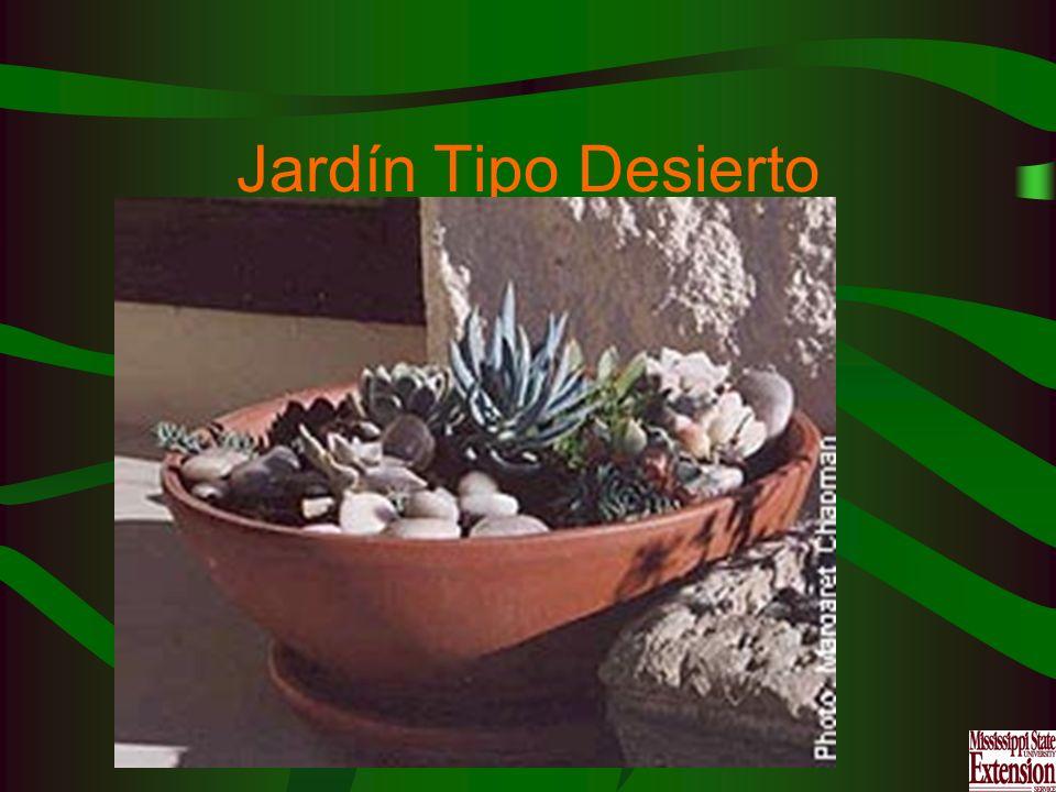 Jardín Tipo Desierto