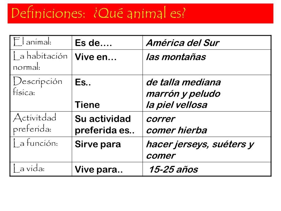 Definiciones: ¿Qué animal es? El animal: Es de….América del Sur La habitación normal: Vive en…las montañas Descripción física: Es.. Tiene de talla med