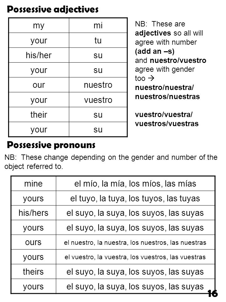 mymi yourtu his/hersu yoursu ournuestro yourvuestro theirsu yoursu Possessive adjectives NB: These are adjectives so all will agree with number (add a