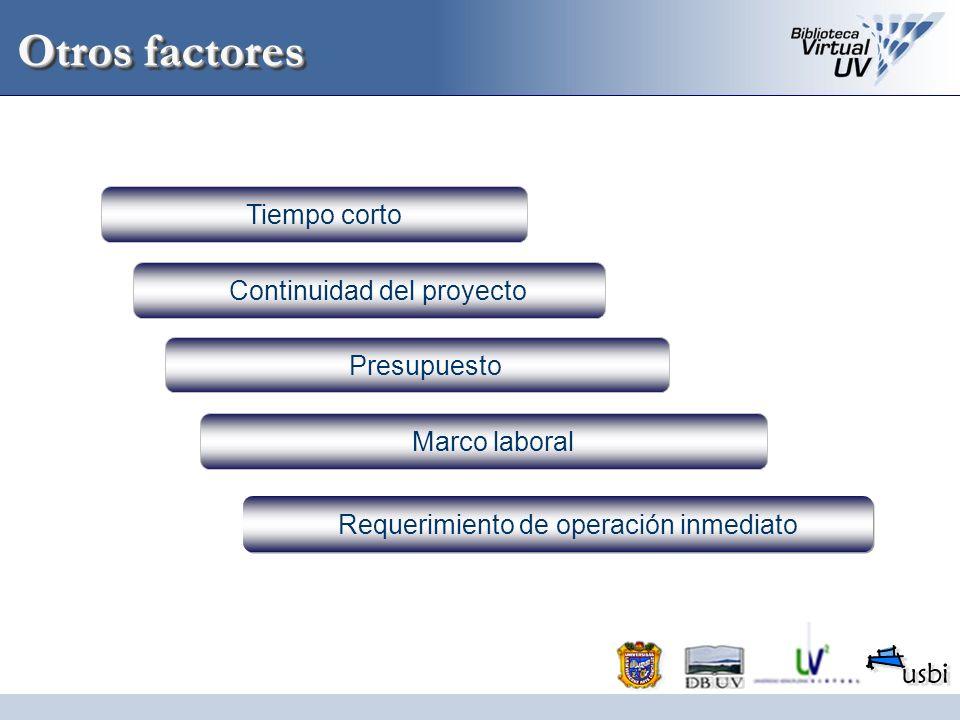 Otros factores Continuidad del proyecto Presupuesto Marco laboral Requerimiento de operación inmediato Tiempo corto