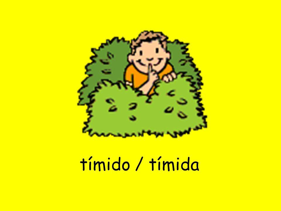 tímido / tímida