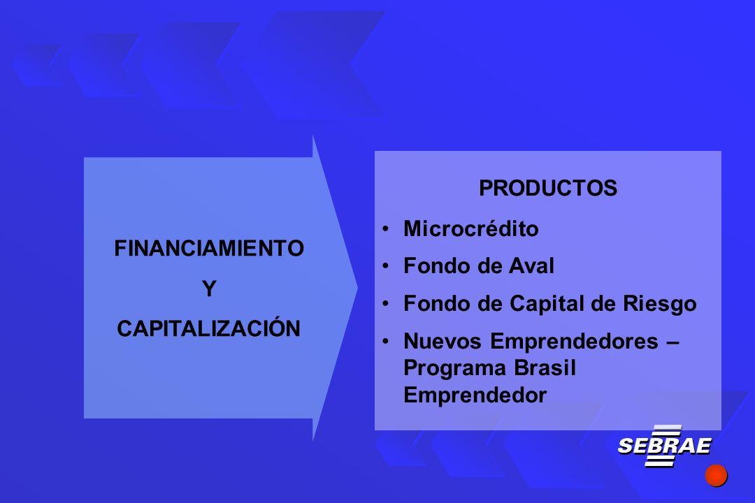 PRODUCTOS Microcrédito Fondo de Aval Fondo de Capital de Riesgo Nuevos Emprendedores – Programa Brasil Emprendedor FINANCIAMIENTO Y CAPITALIZACIÓN