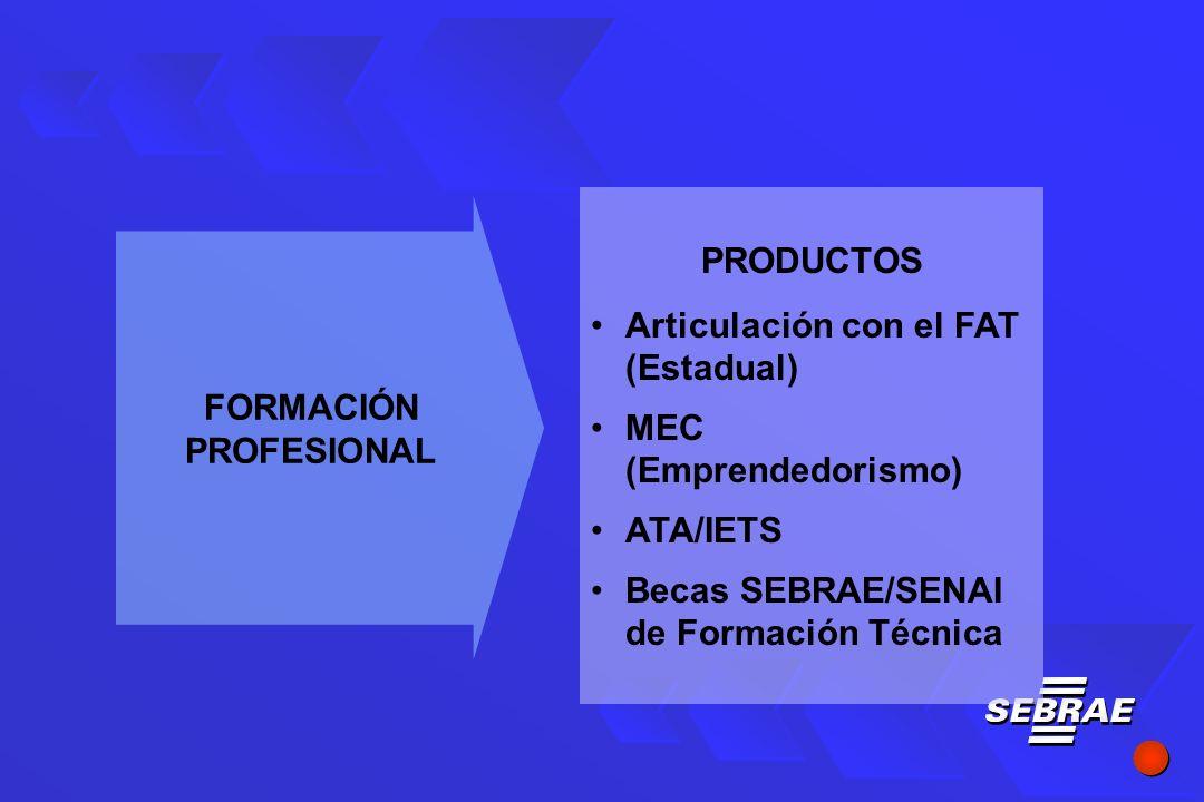 PRODUCTOS Articulación con el FAT (Estadual) MEC (Emprendedorismo) ATA/IETS Becas SEBRAE/SENAI de Formación Técnica FORMACIÓN PROFESIONAL