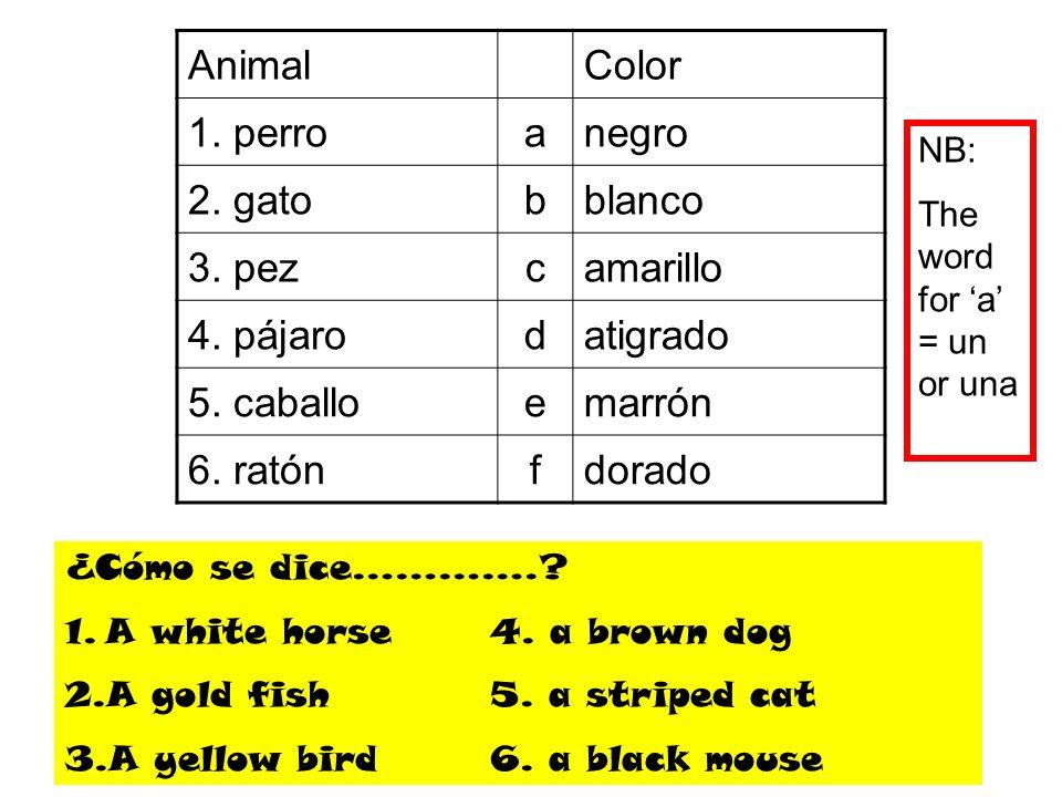 AnimalColor 1. perroanegro 2. gatobblanco 3. pezcamarillo 4. pájarodatigrado 5. caballoemarrón 6. ratónfdorado ¿Cómo se dice………….? 1.A white horse4. a