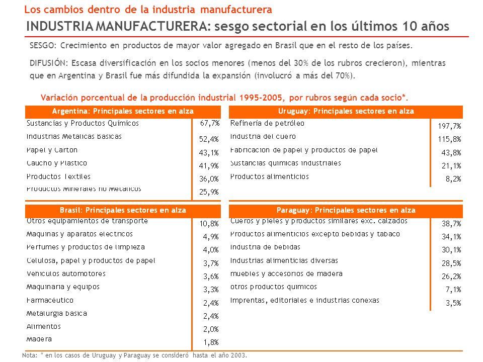 INDUSTRIA MANUFACTURERA: sesgo sectorial en los últimos 10 años Los cambios dentro de la industria manufacturera Variación porcentual de la producción industrial 1995-2005, por rubros según cada socio*.