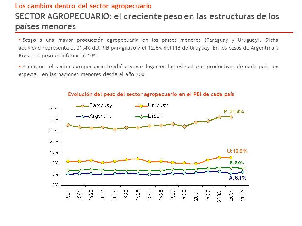 SECTOR AGROPECUARIO: el creciente peso en las estructuras de los países menores Los cambios dentro del sector agropecuario Evolución del peso del sector agropecuario en el PBI de cada país Sesgo a una mayor producción agropecuaria en los países menores (Paraguay y Uruguay).
