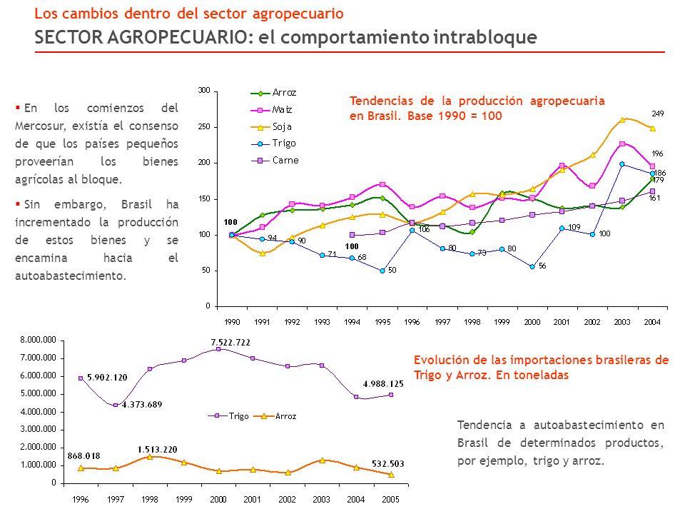 SECTOR AGROPECUARIO: el comportamiento intrabloque Los cambios dentro del sector agropecuario Tendencias de la producción agropecuaria en Brasil.