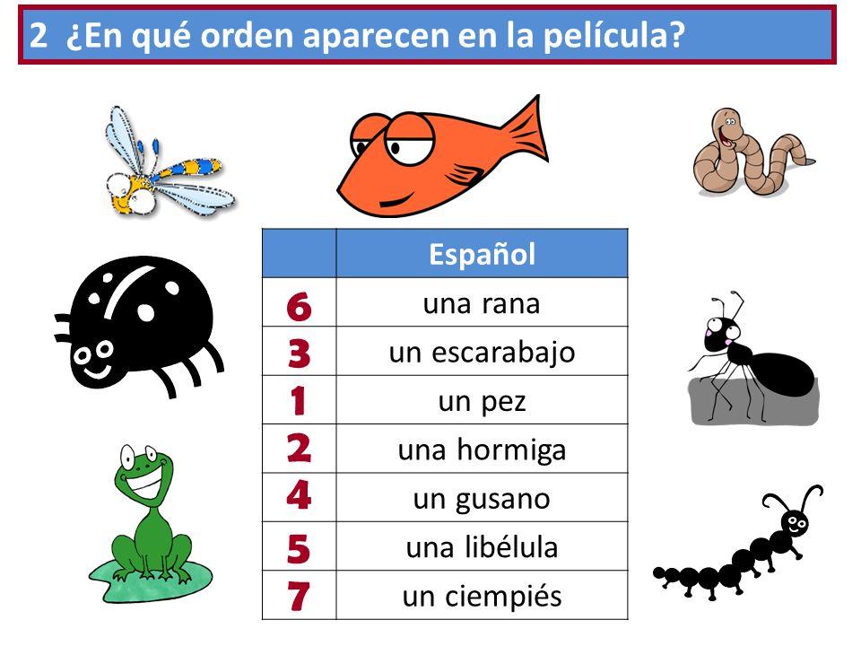 Español una rana un escarabajo un pez una hormiga un gusano una libélula un ciempiés 2 ¿En qué orden aparecen en la película? 1 2 3 4 5 6 7