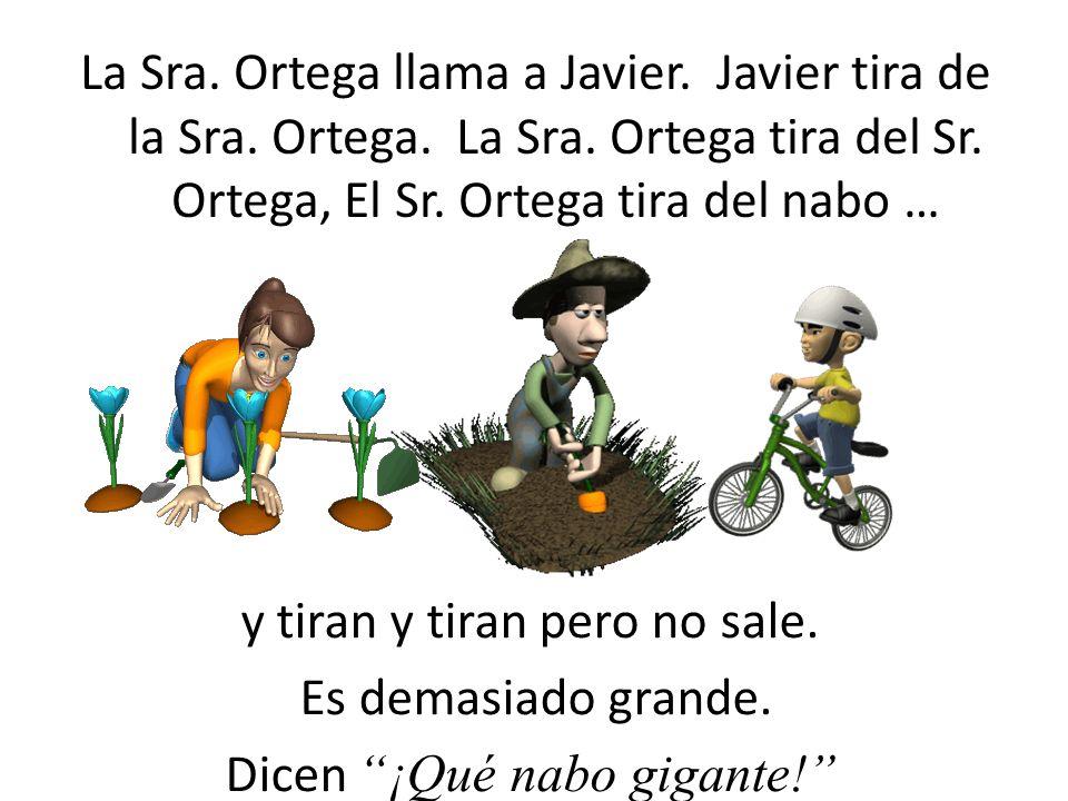 El Sr. Ortega llama a la Sra. Ortega. La Sra. tira del Sr. Ortega, El Sr. Ortega tira del nabo … y tiran y tiran pero no sale. Es demasiado grande. Di