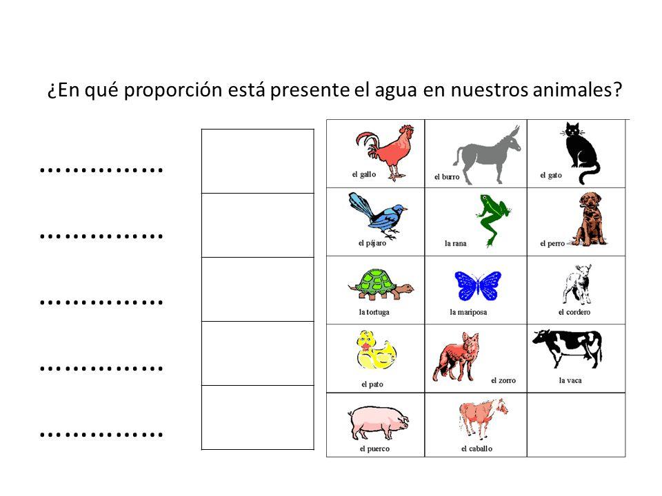 ¿En qué proporción está presente el agua en nuestros animales? ……………