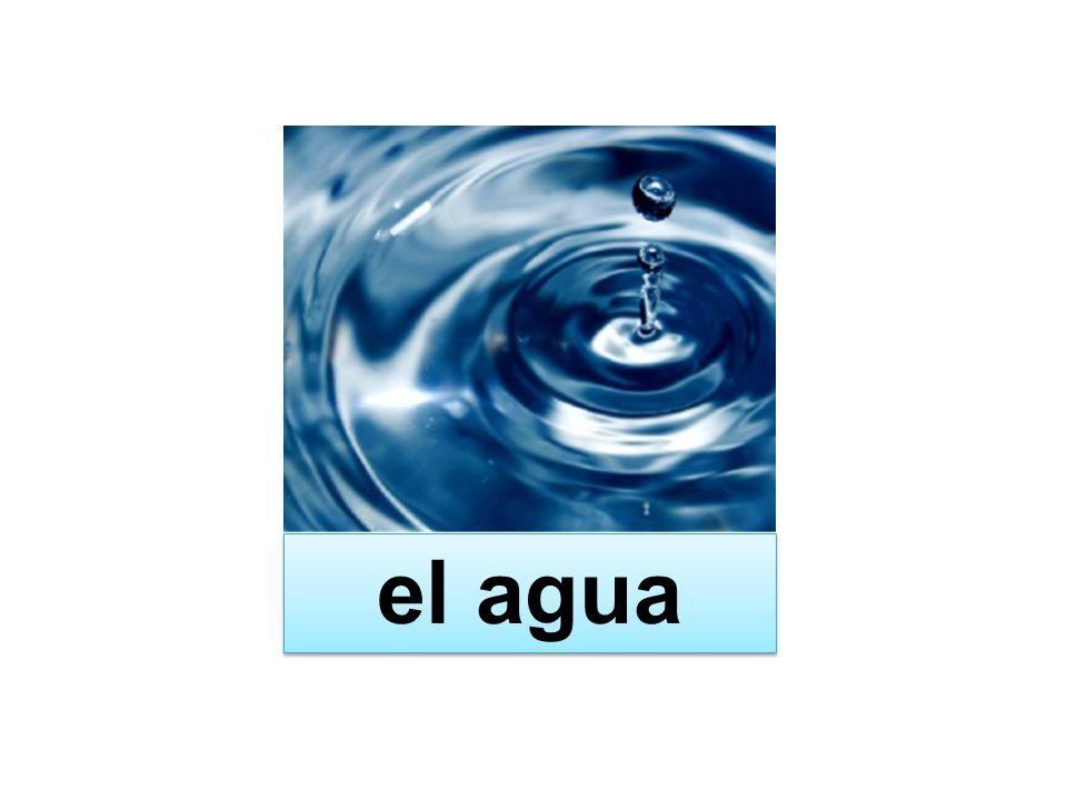 ¿Qué es el agua.