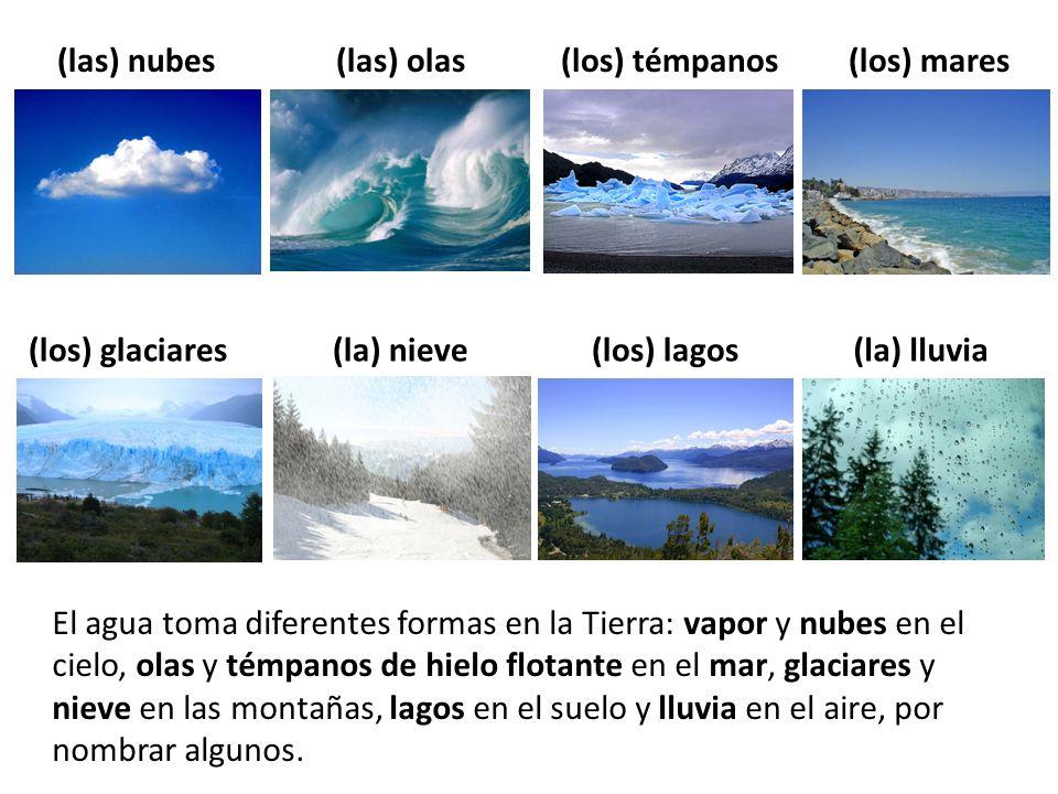 El agua toma diferentes formas en la Tierra: vapor y nubes en el cielo, olas y témpanos de hielo flotante en el mar, glaciares y nieve en las montañas