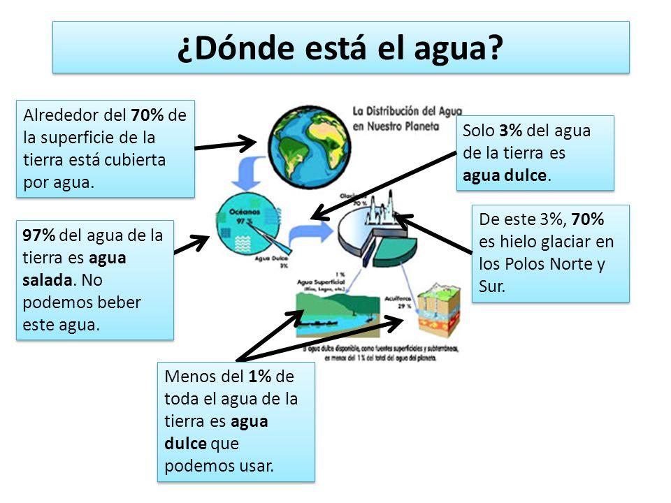 ¿Dónde está el agua? Alrededor del 70% de la superficie de la tierra está cubierta por agua. 97% del agua de la tierra es agua salada. No podemos bebe