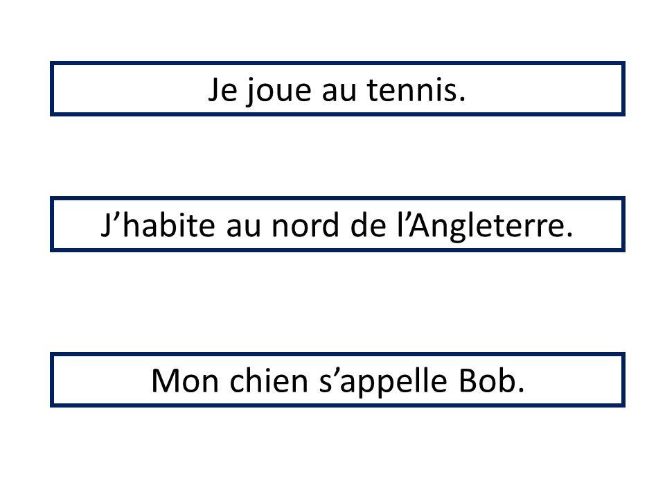 Je joue au tennis. Jhabite au nord de lAngleterre. Mon chien sappelle Bob.