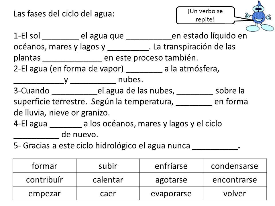 Las fases del ciclo del agua: 1-El sol ________ el agua que __________en estado líquido en océanos, mares y lagos y _________. La transpiración de las