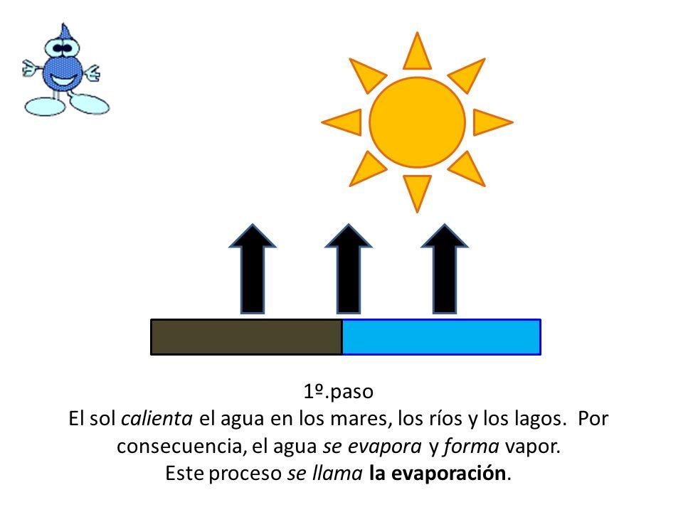 1º.paso El sol calienta el agua en los mares, los ríos y los lagos. Por consecuencia, el agua se evapora y forma vapor. Este proceso se llama la evapo