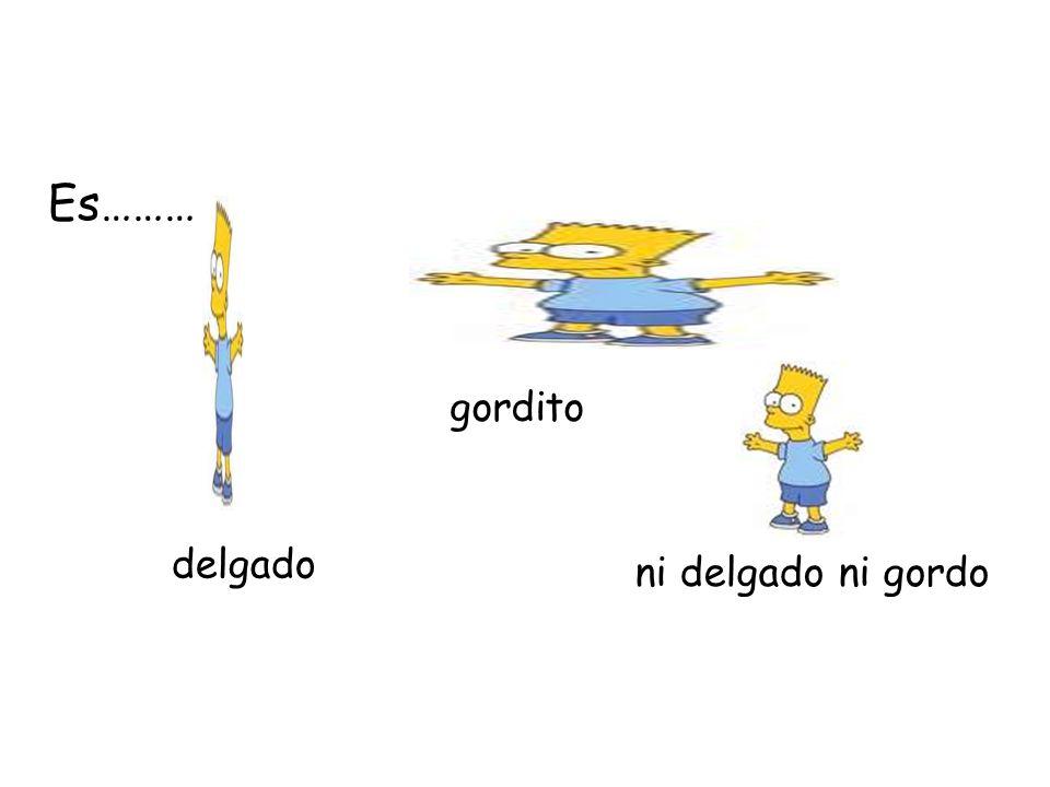 Lo físico Es tall = small/short = medium height = fat = thin =