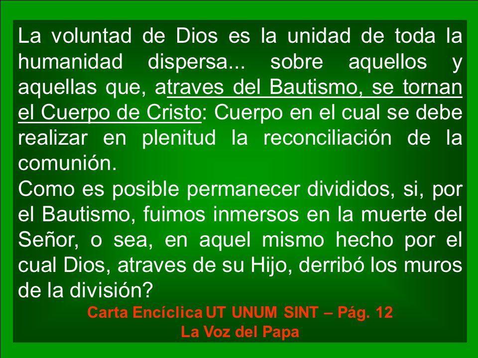 La voluntad de Dios es la unidad de toda la humanidad dispersa... sobre aquellos y aquellas que, atraves del Bautismo, se tornan el Cuerpo de Cristo: