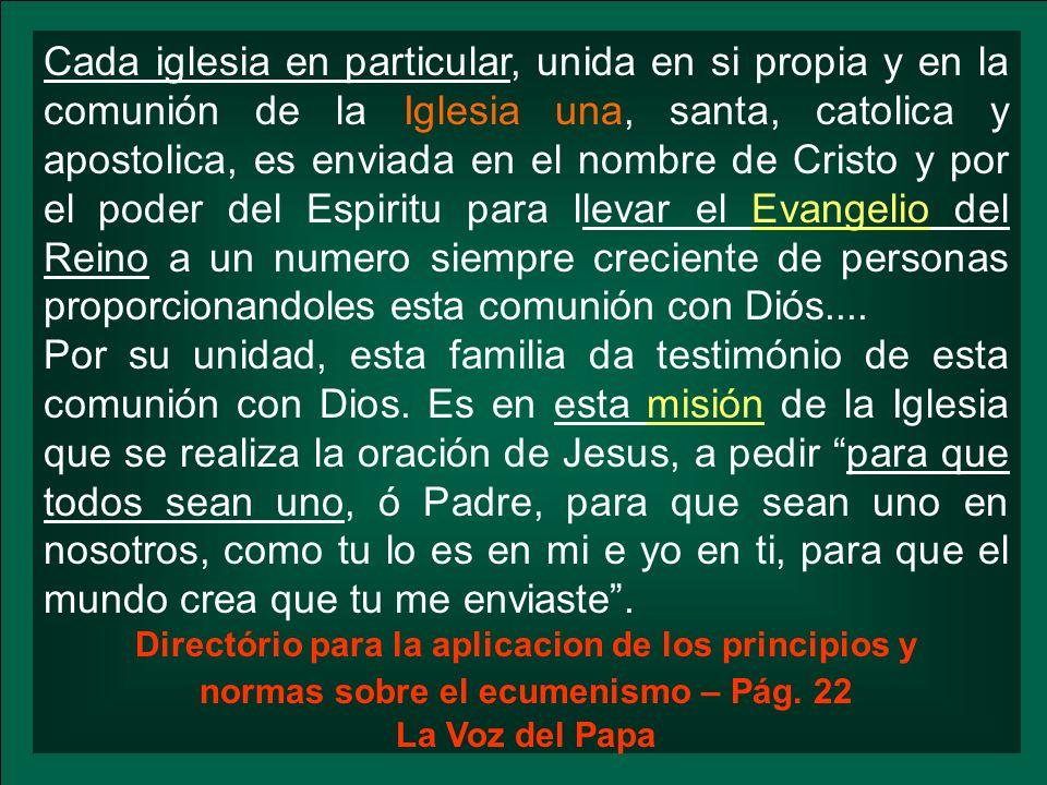 Cada iglesia en particular, unida en si propia y en la comunión de la Iglesia una, santa, catolica y apostolica, es enviada en el nombre de Cristo y p