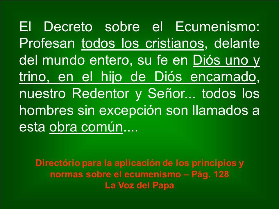 El Decreto sobre el Ecumenismo: Profesan todos los cristianos, delante del mundo entero, su fe en Diós uno y trino, en el hijo de Diós encarnado, nues