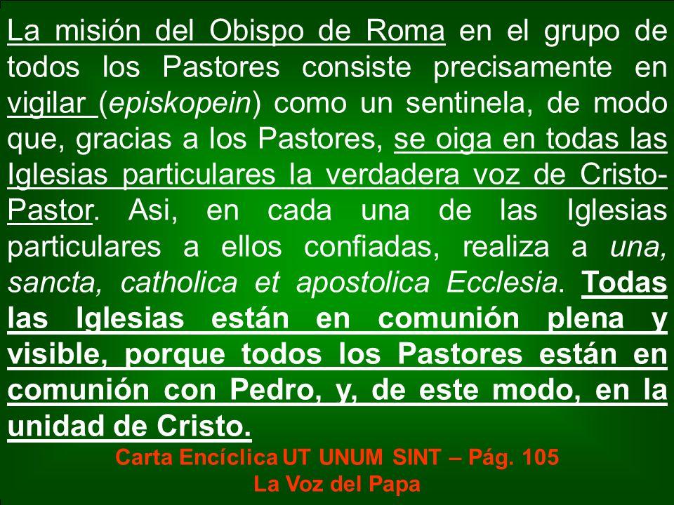 La misión del Obispo de Roma en el grupo de todos los Pastores consiste precisamente en vigilar (episkopein) como un sentinela, de modo que, gracias a