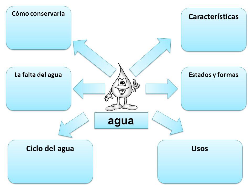 ¿En qué formas encontramos el agua en el mundo? En su estado sólido, la vemos en _____________ y _______________. En su estado líquido, hay agua en __