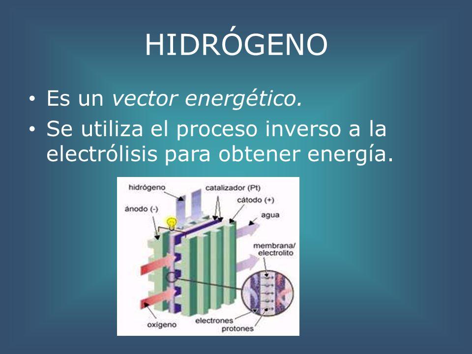 HIDRÓGENO Es un vector energético. Se utiliza el proceso inverso a la electrólisis para obtener energía.