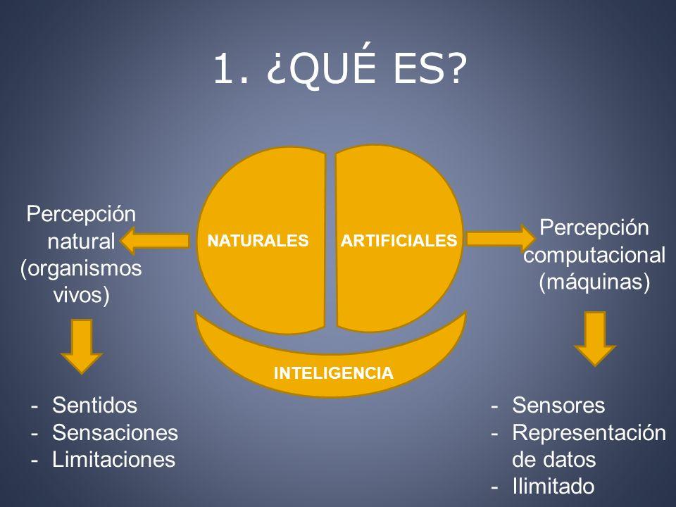 1. ¿QUÉ ES? NATURALESARTIFICIALES Percepción computacional (máquinas) Percepción natural (organismos vivos) INTELIGENCIA -Sentidos -Sensaciones -Limit
