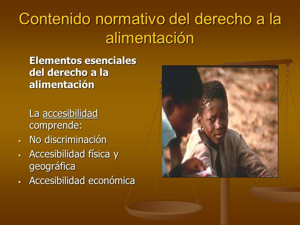 Contenido normativo del derecho a la alimentación Elementos esenciales del derecho a la alimentación La accesibilidad comprende: No discriminación No discriminación Accesibilidad física y geográfica Accesibilidad física y geográfica Accesibilidad económica Accesibilidad económica