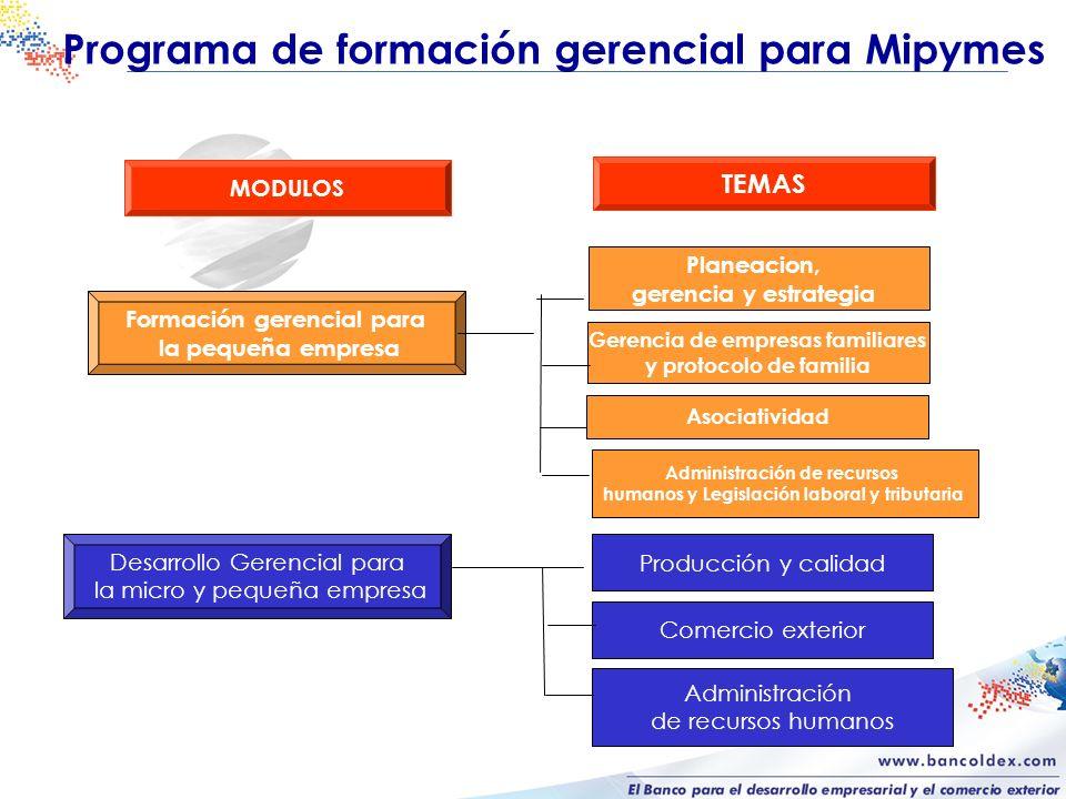 Programa de formación gerencial para Mipymes Desarrollo Gerencial para la micro y pequeña empresa Comercio exterior Producción y calidad MODULOS TEMAS