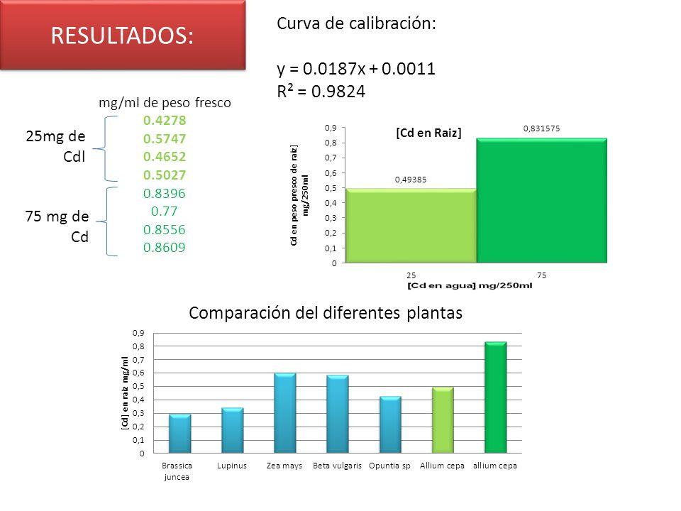 RESULTADOS: Curva de calibración: y = 0.0187x + 0.0011 R² = 0.9824 mg/ml de peso fresco 0.4278 0.5747 0.4652 0.5027 0.8396 0.77 0.8556 0.8609 25mg de Cdl 75 mg de Cd