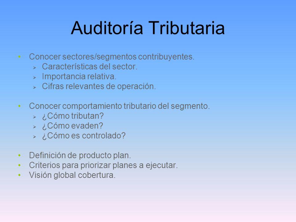 Auditoría Tributaria Conocer sectores/segmentos contribuyentes. Características del sector. Importancia relativa. Cifras relevantes de operación. Cono