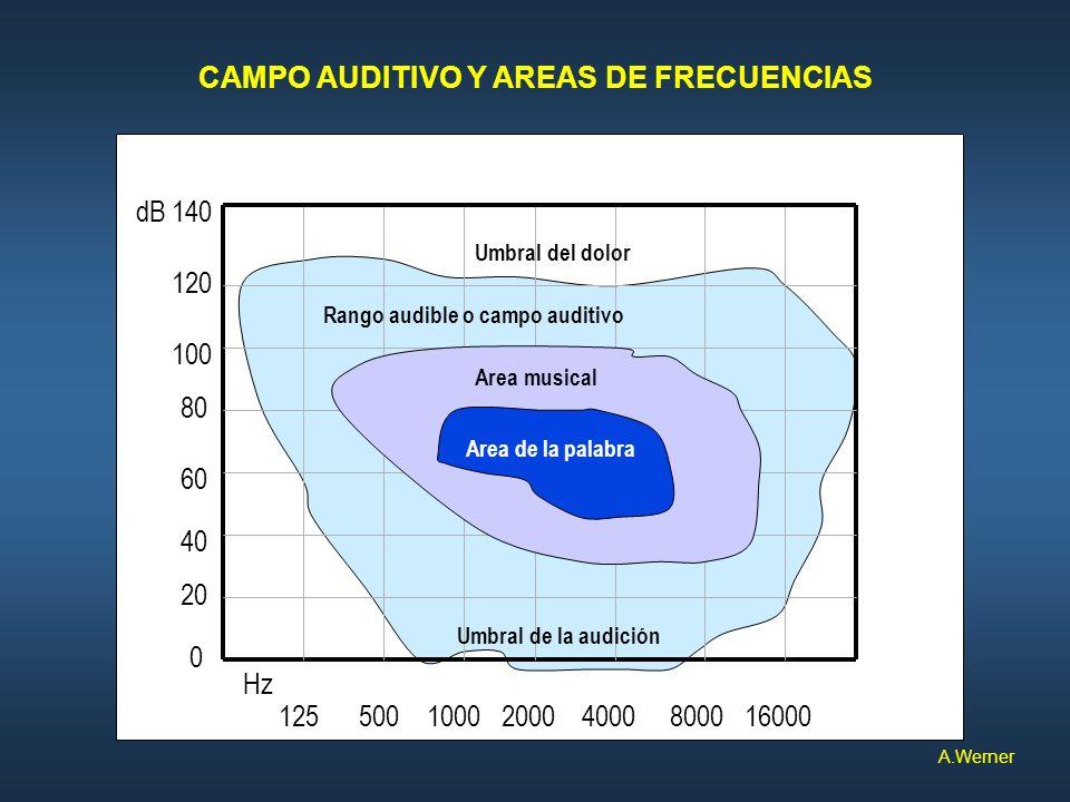 125 500 1000 2000 4000 8000 16000 140 120 100 80 60 40 20 0 dB Hz Rango audible o campo auditivo Area musical Area de la palabra Umbral del dolor Umbr