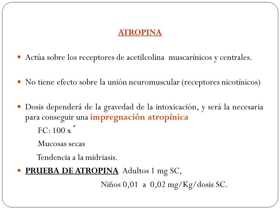ATROPINA Actúa sobre los receptores de acetilcolina muscarínicos y centrales. No tiene efecto sobre la unión neuromuscular (receptores nicotínicos) Do