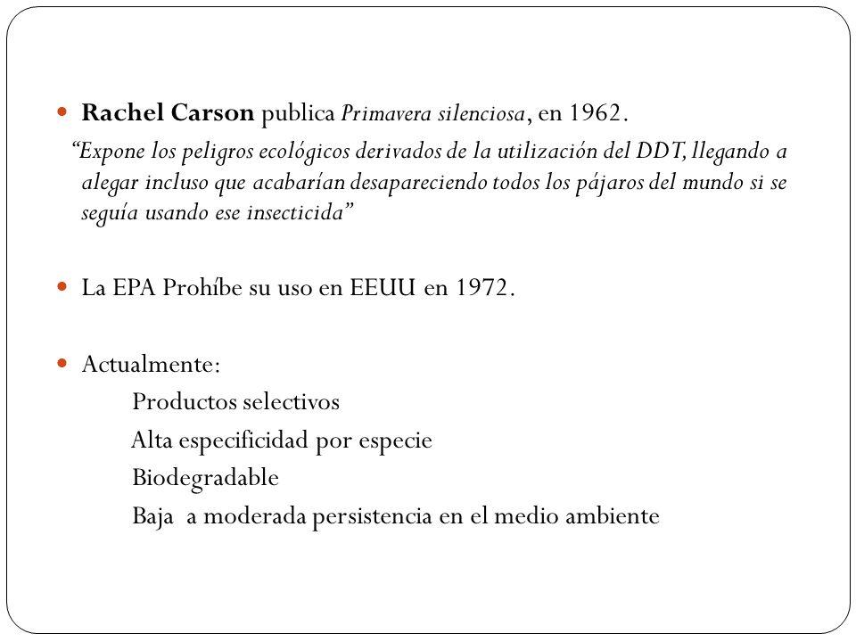 Rachel Carson publica Primavera silenciosa, en 1962. Expone los peligros ecológicos derivados de la utilización del DDT, llegando a alegar incluso que