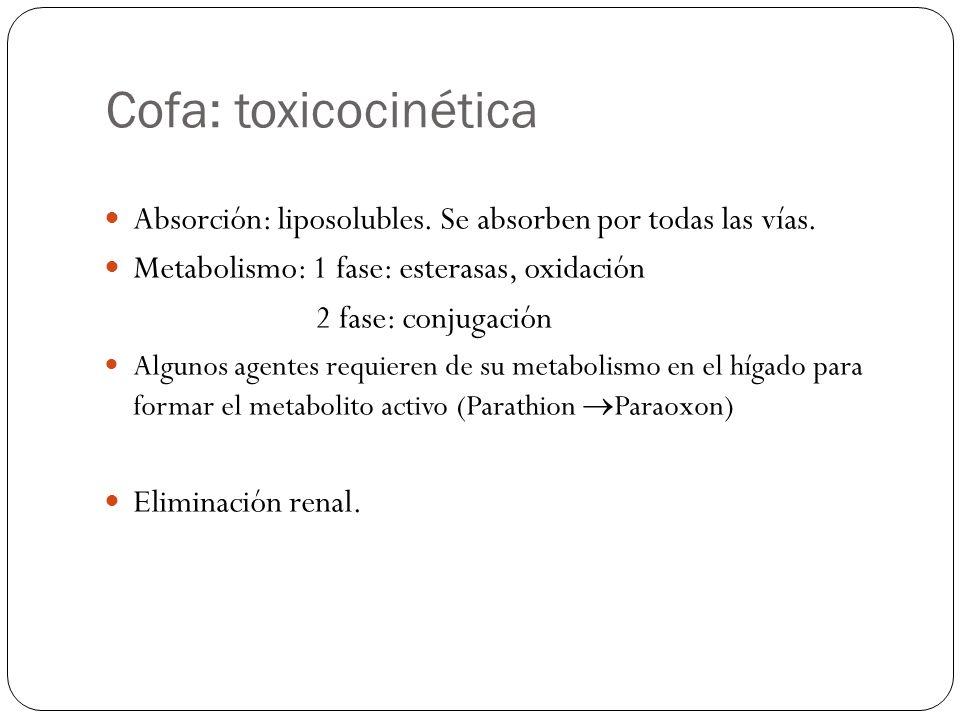 Cofa: toxicocinética Absorción: liposolubles. Se absorben por todas las vías. Metabolismo: 1 fase: esterasas, oxidación 2 fase: conjugación Algunos ag