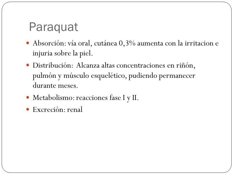 Paraquat Absorción: vía oral, cutánea 0,3% aumenta con la irritacion e injuria sobre la piel. Distribución: Alcanza altas concentraciones en riñón, pu
