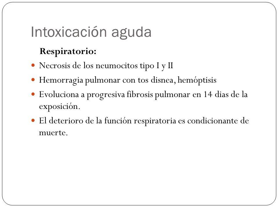 Intoxicación aguda Respiratorio: Necrosis de los neumocitos tipo I y II Hemorragia pulmonar con tos disnea, hemóptisis Evoluciona a progresiva fibrosi