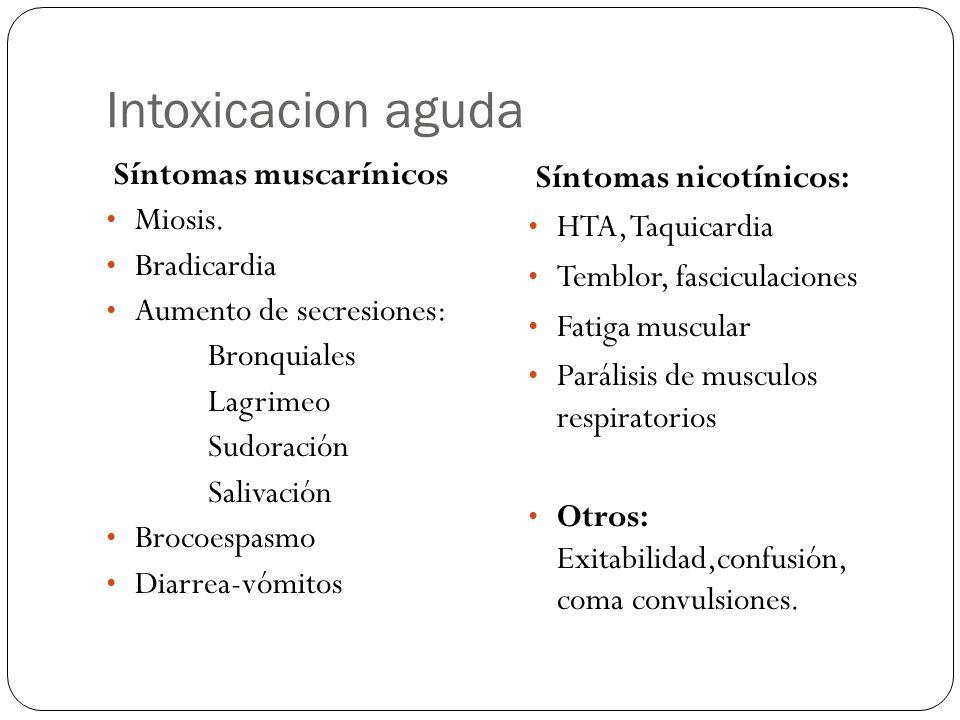 Intoxicacion aguda Síntomas muscarínicos Miosis. Bradicardia Aumento de secresiones: Bronquiales Lagrimeo Sudoración Salivación Brocoespasmo Diarrea-v