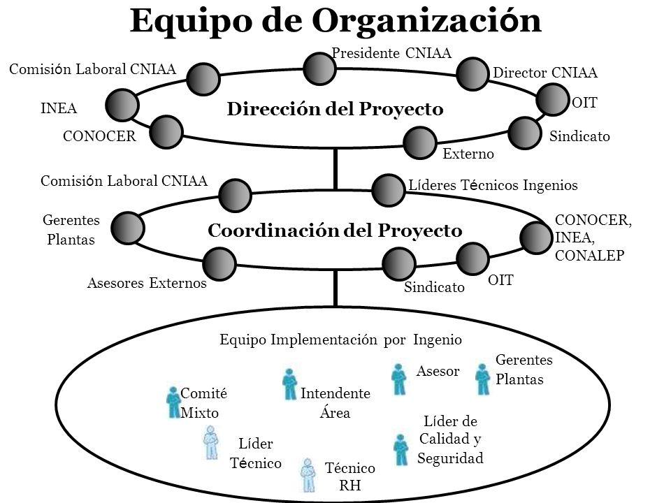 L í der T é cnico Equipo de Organizaci ó n Dirección del Proyecto Coordinación del Proyecto Director CNIAA Presidente CNIAA Comisi ó n Laboral CNIAA C