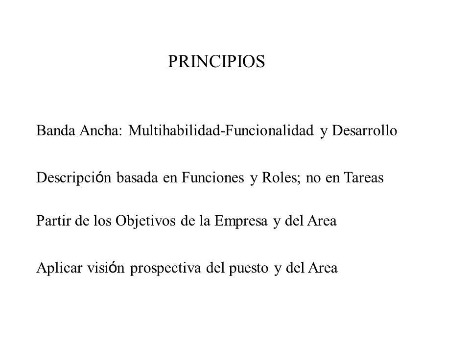 PRINCIPIOS Banda Ancha: Multihabilidad-Funcionalidad y Desarrollo Partir de los Objetivos de la Empresa y del Area Descripci ó n basada en Funciones y