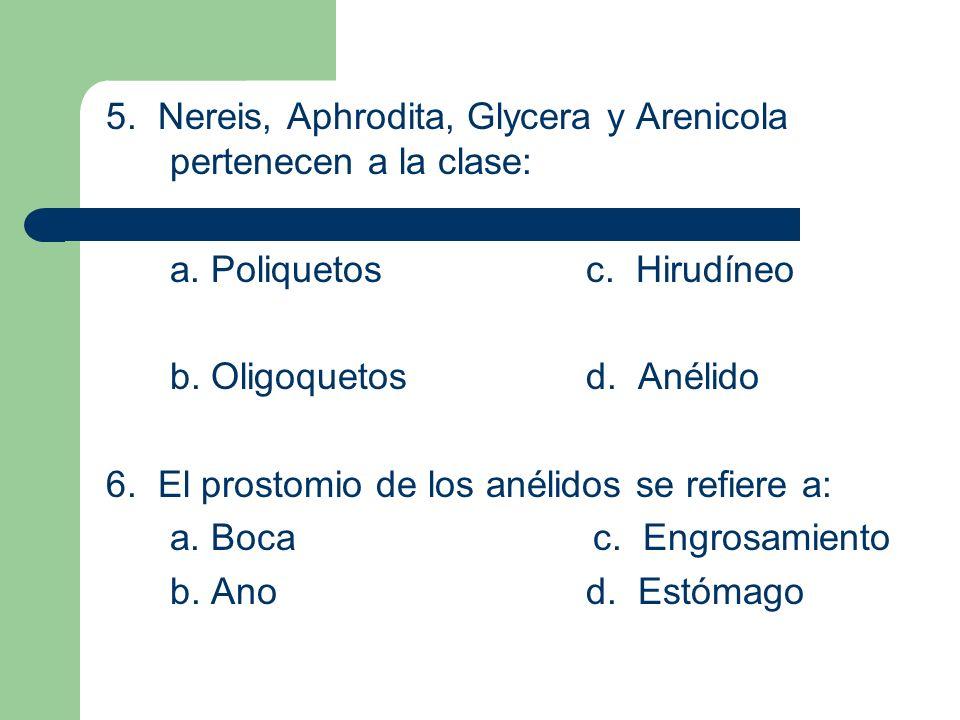 5. Nereis, Aphrodita, Glycera y Arenicola pertenecen a la clase: a. Poliquetosc. Hirudíneo b. Oligoquetosd. Anélido 6. El prostomio de los anélidos se