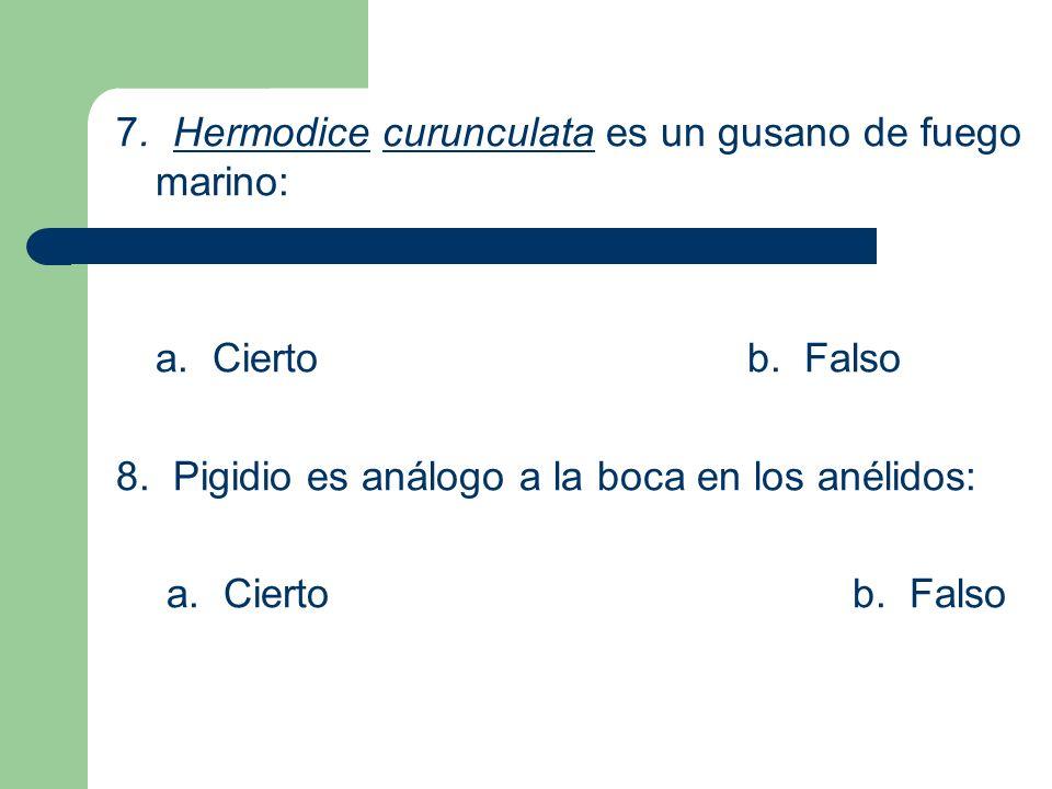7. Hermodice curunculata es un gusano de fuego marino: a. Ciertob. Falso 8. Pigidio es análogo a la boca en los anélidos: a. Ciertob. Falso