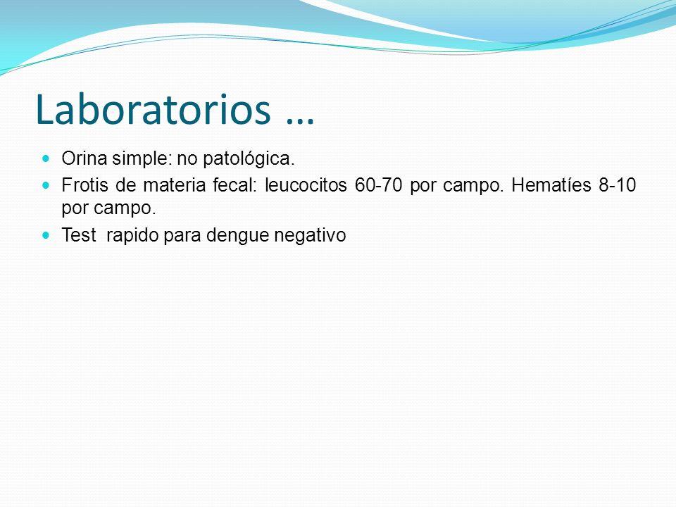 Orina simple: no patológica. Frotis de materia fecal: leucocitos 60-70 por campo. Hematíes 8-10 por campo. Test rapido para dengue negativo Laboratori